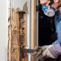 Termite-Chemical-Termite-Inspections-Sydney-Dylan-Cope-Pest-Control